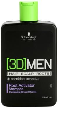 Schwarzkopf Professional [3D] MEN champô para ativar raízes